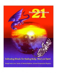 21 Days to wellness cover
